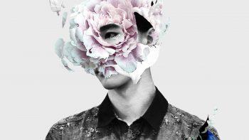 Multimedia Arts – Бакалавриат по мультимедиа арт