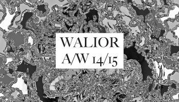 Predatorism – Walior